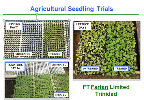 Agricultural Seedling Trials