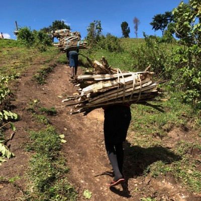 Carrying wood for fuel Kitale Kenya